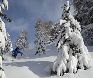 session freeride vars risoul la forêt blanche