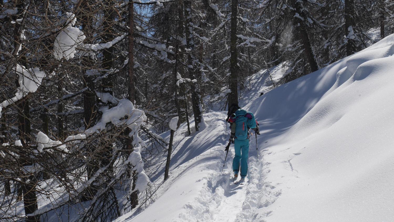 foret-ski-rando